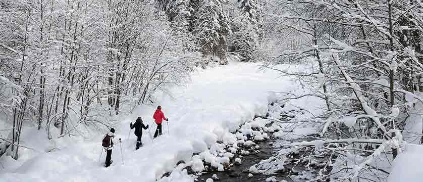 france_portes-du-soleil_morzine-snow-shoers.jpg